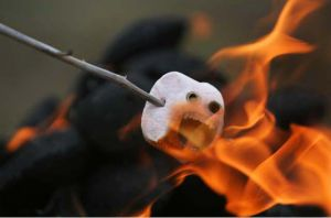 Marshmallow death by Theresa42J