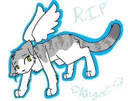 Angel -- R.I.P by xBadgerclaw
