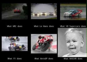 The true fact about NASCAR by The--Mad--Russian