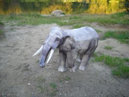 African elephant papercraft by TimBauer92