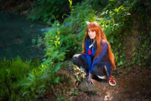 Roar. Holo, spice and wolf cosplay by Giuzzys