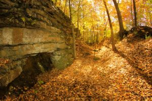 The Road Less Traveled By (Autumn) III by SparkVillage