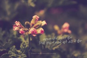 Your memory haunts me.. by lalitkala