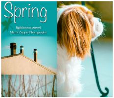 Spring lightroom preset by MartaLilita