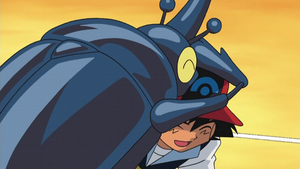 Ash's Heracross showing its affection by PokemonOnlineGames
