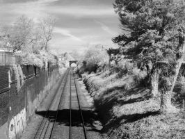 Exeter Railway Line in Infra-Red: 2 by yaschaeffer