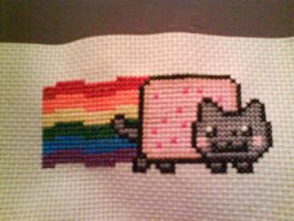 Nyan Cat 3x5 by kisutra