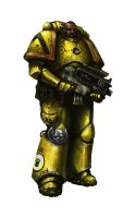 Imperial Fist with Bolter by MasterAlighieri