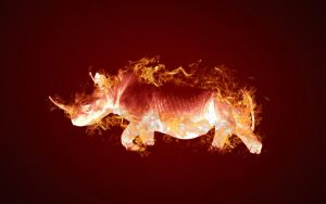 This rhino is on fire by jhevenor
