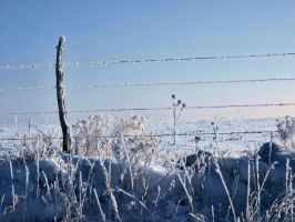 snowy fence 13 by fotophi
