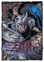 Rhino Sketch Card by tonyperna