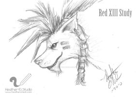 Red XIII Study by stormwhisper02