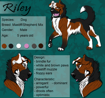 Riley - Charactersheet by Rabentag