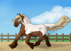 Can You Trot the Trot by SpytFyre-Ranch