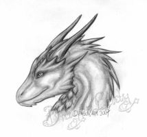 A dragoness. by Eva-the-DragonLady
