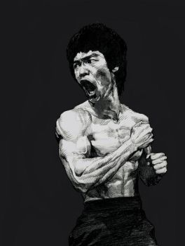 Bruce Lee-5 by kse332