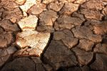 Thirsty soil by haimohayon