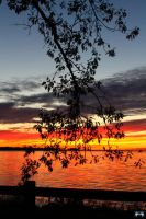 Fall Sunset Series #110 by LifeThroughALens84