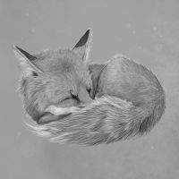 #24 Nap by Quindayo