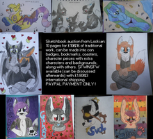 Traditional Sketchbook Auction on Furbuy -LIVE- by Lockian