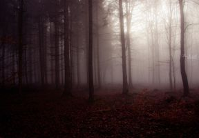 Forest Of Lost Souls by Fleur-de-Noel