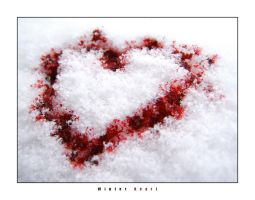 winter heart by GoranDA