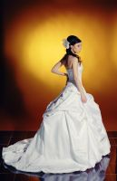 bride wedding dress stock 3 by Luria-XXII