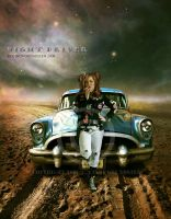 Night driver by CindysArt