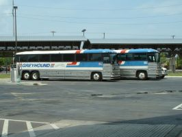 two MC-12s by Greyhound-Bus