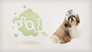 Eliot the farting Dog by Mstarback