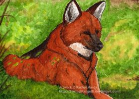 ACEO - Sequoia by 8TwilightAngel8