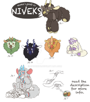 nivek species reference {closed} by spideride