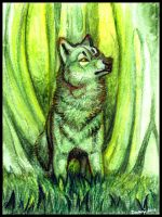 Forest Spirit Wolf by daanzi