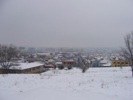 Town covered in snow by scarlette13