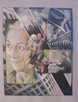 Spiderman and Aunt May by TrevorGrove