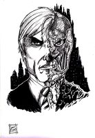 Two Face - The Dark Knight by samrogers
