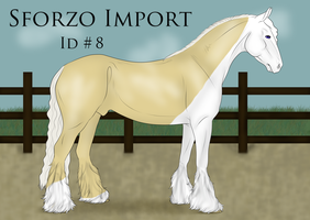 Sforzo Import 8 by BettaFreak123