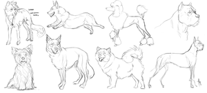 Livestream Sketches by Serphire