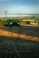 View from Scrabo Hill II by Gerard1972