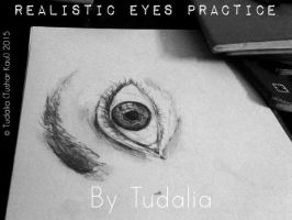 Realistic Eyes Practices! by Tudalia