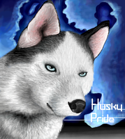 Husky Pride by AphoticFlames