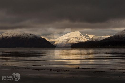 Sunlight on a moody day by AngiWallace