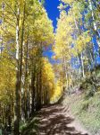 The Yellowbrick Road: Pearl Pass by Shadow848327