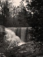 Dixon Springs by Brasier76