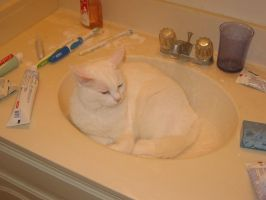 Snowball in the Sink 4 by FluidGirl82