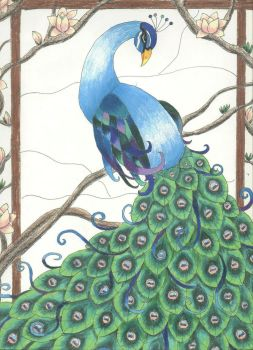 Peacock by tpturtle