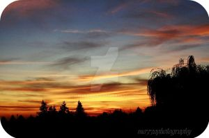 Autumn Skies by amandaWAY