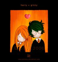 HP . Harry + Ginny . 2 by porotto