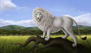 Commission: Rakeesh the White Lion by DeyVarah