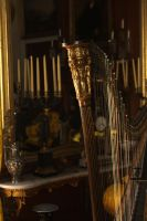 Harp in Hampden House by PattiPix